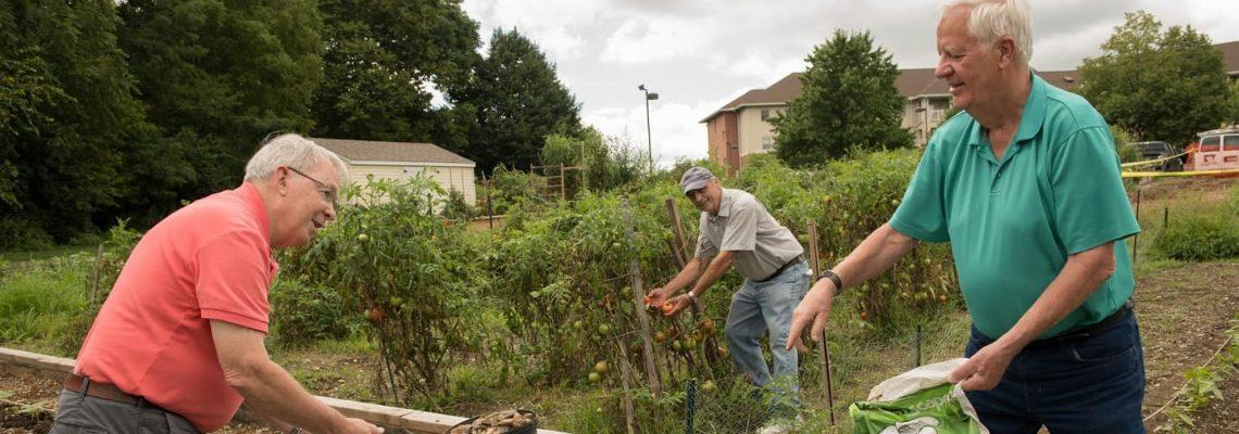 Woodcrest Villa garden volunteers